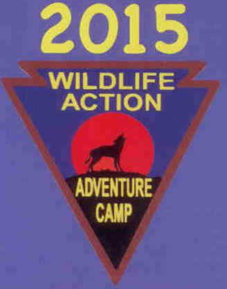 Adventure Camp Arrowhead 2015